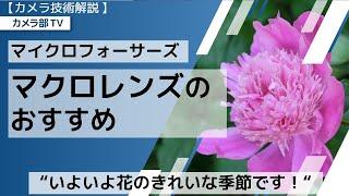 """【カメラ技術解説】マイクロフォーサーズ「マクロレンズのおすすめ」~""""いよいよ花のきれいな季節です!""""~"""