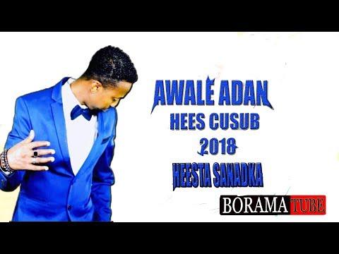 Awale Adan   Ahlaam 2018 OFFICIAL VIDEO   HD