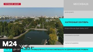Москвичам пообещали бабье лето - Москва 24