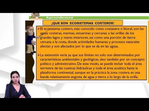 Ecosistemas Naturales de Honduras clase 7 – Quinto Grado – Ciencias Naturales