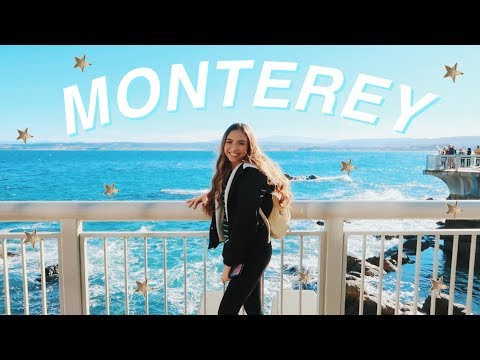 MY FIRST VLOG!! | traveling to monterey bay + why i changed my channel