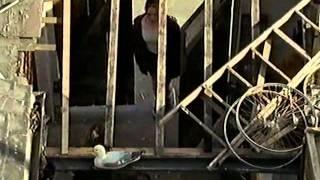 Nature Boy (BBC 2000) Lee Ingleby - Part 1 (1/4)