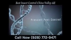 Best Insect Control Chino Valley AZ