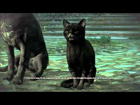 the-witcher-3:-hearts-of-stone---scenes-from-a-marriage:-black-cat-&-dog-violet-rose-caretaker-chat