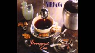 Nirvana- Pennyroyal Tea (Albini Mix)