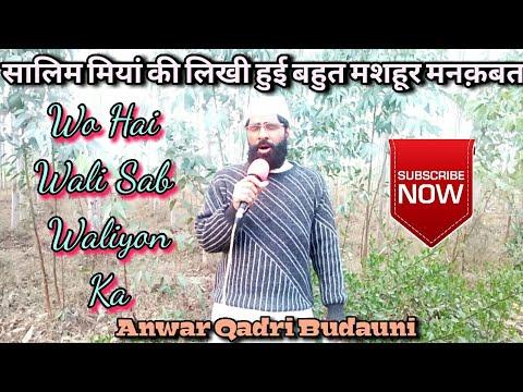 Wo Hai Wali Sab Waliyon Ka ___ Kalaam Hazrat Salim Miya Sahab ___ Aawaaz Anwar Qadri Saidpur Budauni