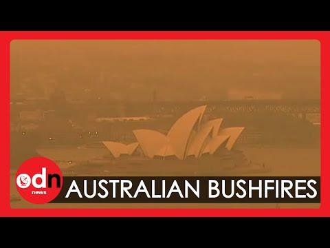 Australia Ravaged by Intense Bushfires