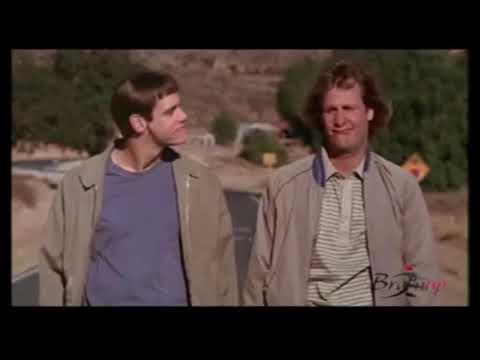 Download Jim Carrey - Scemo e più Scemo  - Non preoccuparti, arriverà anche il nostro momento