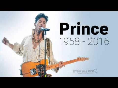 RIP Prince Purple Rain By Petrucci