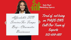 Affordable SEO Services Tampa Bay- Clearwater Florida - Local SEO Hillsborough County Florida