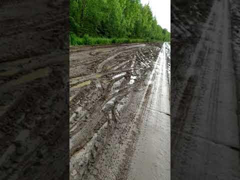 Дорога Луза - Лальск