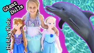 Princess Surprise Toy Reviews and We See Dolphins in Hawaii