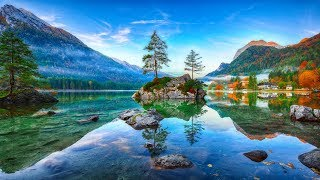 Calming Peaceful Nature, Instant Calm, Relaxing Sleep Music, Stress Relief, Sleep Early ★ 52