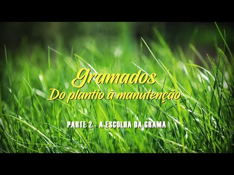 GRAMADOS - PARTE 2 – ESCOLHA DA GRAMA