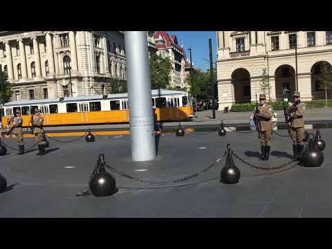 Changing of the Guards at the Hungarian Parliament Building in Budapest