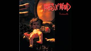 Watch Babes In Toyland Blood video