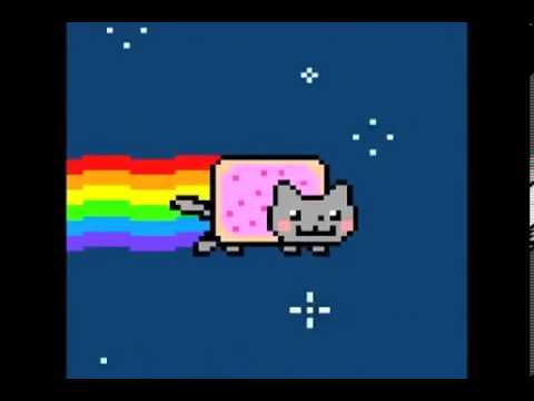 Miau Cat Youtube