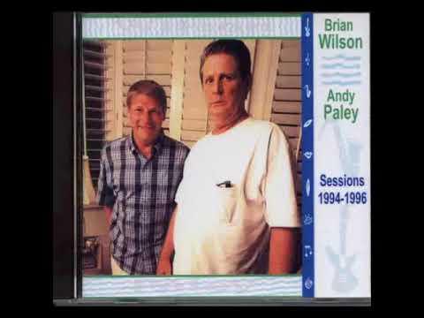 andy paley + brian wilson / baywatch nights (dancing the night away)