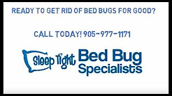 Get Rid of Bed Bugs - Sleep Tight Bed Bug Specialists -  Wellandport - 905-977-1171