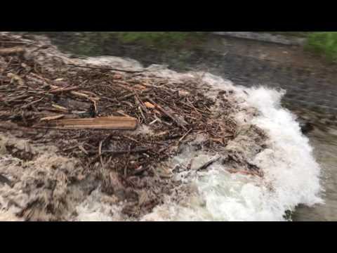 Laui Giswil 31.5.2017, 20.07, Hochwasser Flutwelle nach Gewitter im Einzugsgebiet