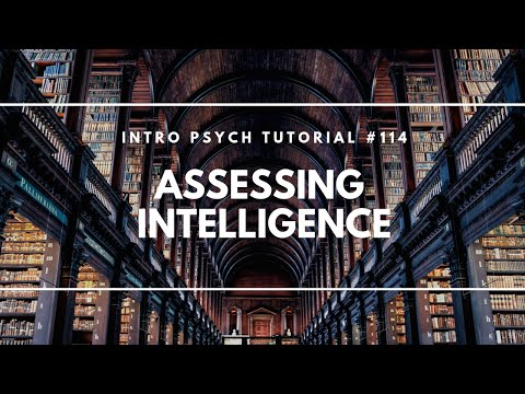 Assessing Intelligence (Intro Psych Tutorial #114)
