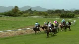 Vidéo de la course PMU PRIX MY MAN ET ASANGA