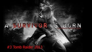 #3 Tomb Raider 2013
