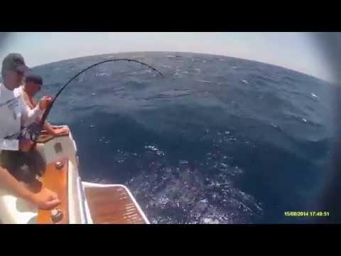 Pesca de ATÚN gigante en Jávea