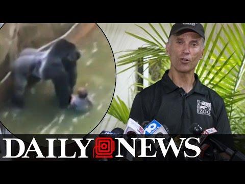 Cincinnati Zoos director defends decision to kill Harambe the gorilla