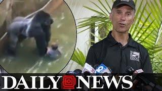 Cincinnati Zoo's director defends decision to kill Harambe the gorilla