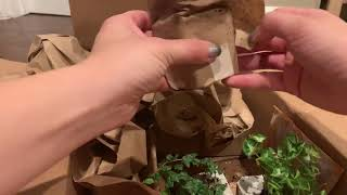 Josh's Frogs plant unboxing