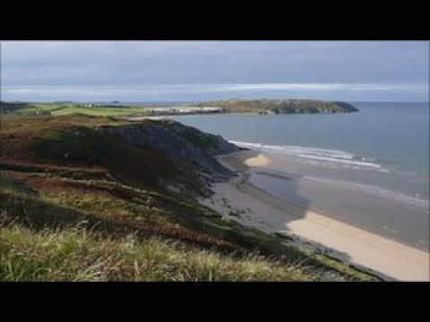 Gower dialect