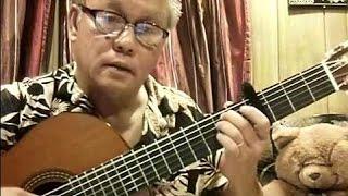 Vùng Lá Me Bay (Anh Việt Thanh) - Guitar Cover