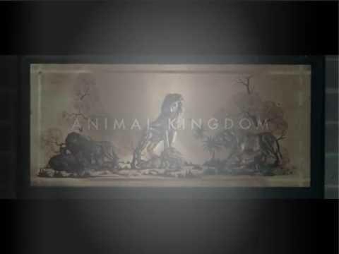 Animal Kingdom 2010 full