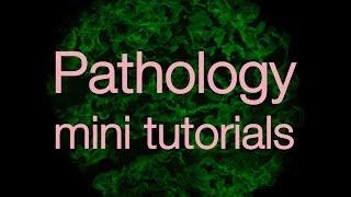 Pathology mini tutorials trailer