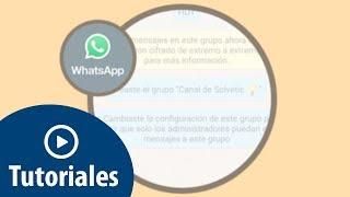 Cómo crear canal WhatsApp que solo pueda hablar el administrador