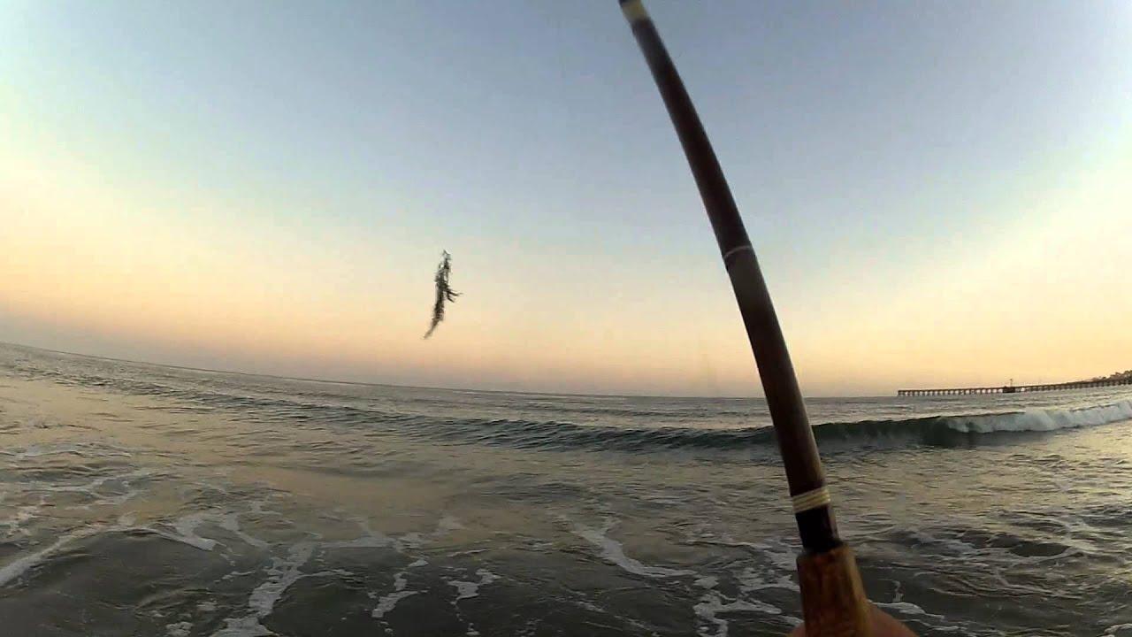 CPR on a Wiggly Fish in Santa Barbara at Goleta Beach - YouTube