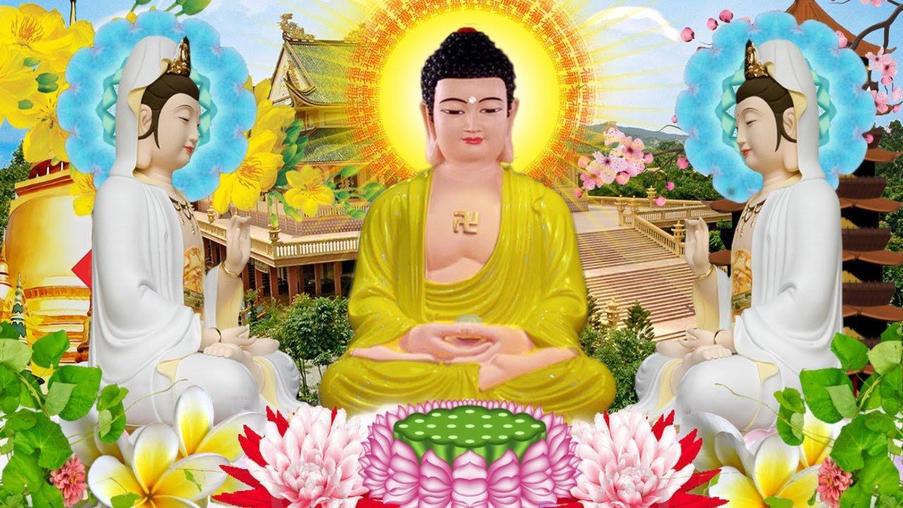 Ngày 21 Âm Mở Nghe Kinh Phật May Mắn Ngủ Non Tâm An Vạn Sự Tài Lộc - Tụng Kinh Phật