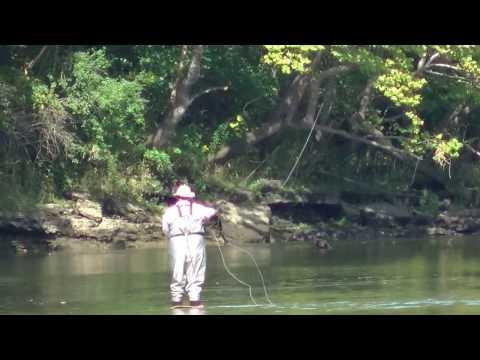 Trout fishing below table rock dam Missouri