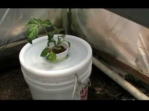 Compost Tea Hydroponics, Aquaponics-DIY Organic Hydroponic Tomatoes