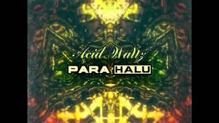 Para Halu - Influx [psy-trance]