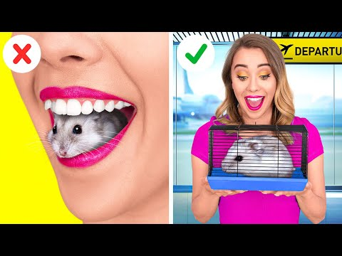 HOW TO SNEAK PETS INTO THE PLANE    Funny Ideas To Sneak Anything Anywhere by 123 GO!