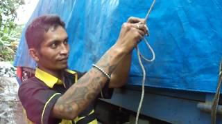 Video Om Dhidhi Mengikat Terpal Truck tronton Isuzu Giga Dengan Tali Kapal download MP3, 3GP, MP4, WEBM, AVI, FLV September 2018