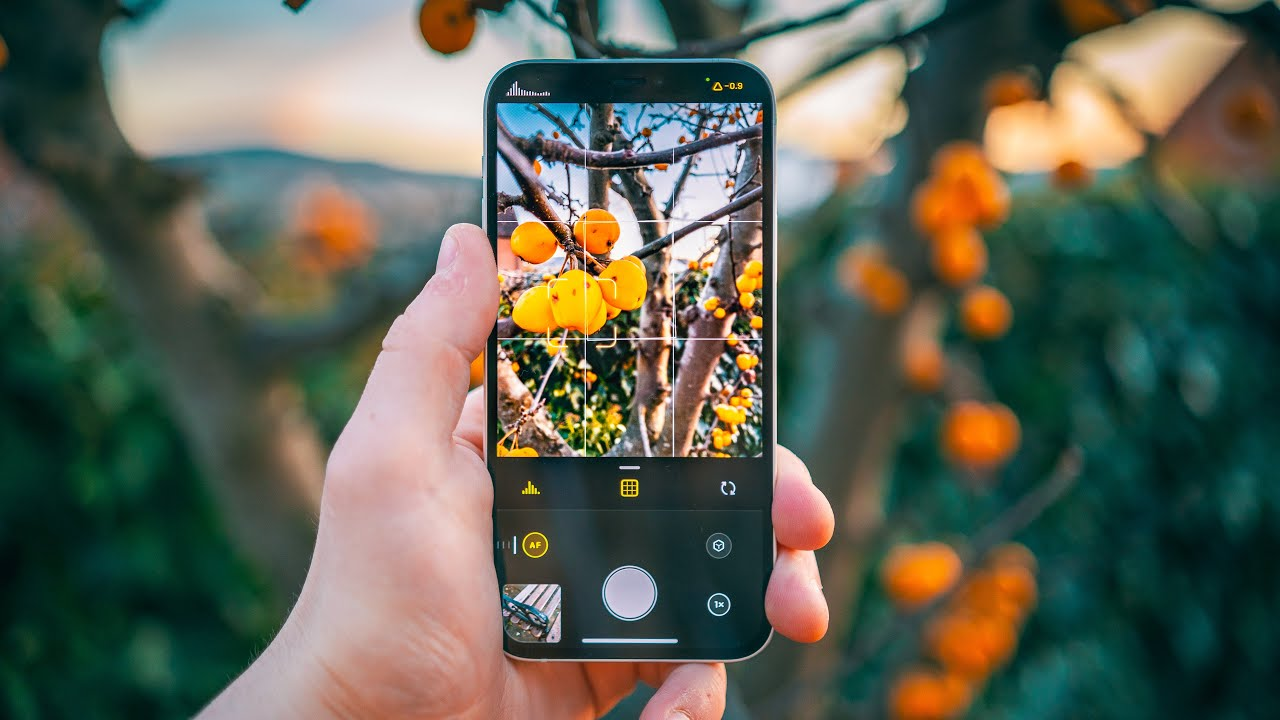Download How to take RAW Photos on ANY iPhone - Halide Camera!