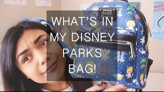 What's in my disney parks bag!