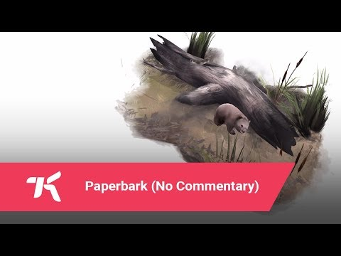 Paperbark (No Commentary)