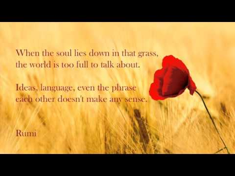 Rumi - Poem - Out Beyond Ideas of . . .
