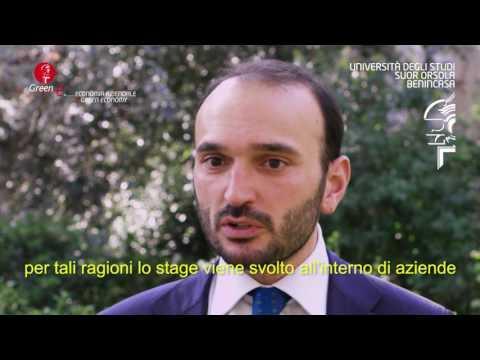 Economia Aziendale e Green Economy - Prof. Paolo Ghionni