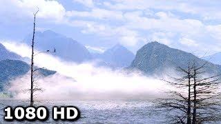 Странный туман - Начало из фильма ужасов Мгла (2007)