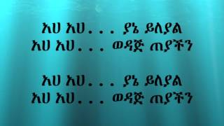 Netsanet Ayele - Yitawoj Beyfa ይታወጅ በይፋ (Amharic With Lyrics)